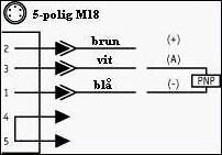 5poligM18